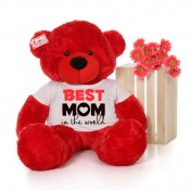 4 Feet Big Mothers Day Teddy Bears (5)